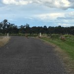 Photo de Hunter Valley Wine Tasting Tours