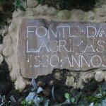 Foto de Quinta das Lagrimas