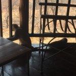 Photo de Victoria Falls Safari Lodge