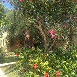 Foto de Pueblo Menorquin