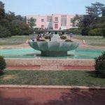Foto de Museo de Serralves
