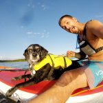 Even Tilly gets out on the SUP for the weekly paddle events!