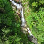 Foto de Boquete Tree Trek
