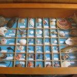 Really interesting shell display.