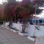 Merit Cyprus Gardens Foto