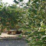 Foto de Agriturismo Sant'Elia