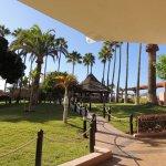 Iberostar Bouganville Playa Foto