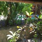 Photo of Tropical Bali Hotel