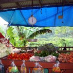 Oracabessa market (adj James Bond Beach)