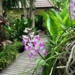 Oriental Kwai Resort Foto