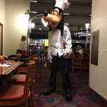 Goofy making the rounds