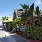 Dolphin Bar & Shrimp House Foto