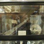 Foto di Whitby Museum