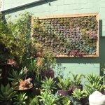 DIG gardens