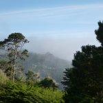 Fog rolling in