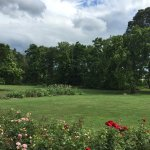 The grounds of Eisenhower's farm