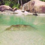 Photo de Itamambuca Eco Resort