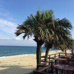 Marine Blue Yakushima Foto