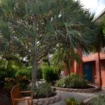 Photo of Holiday Inn Sanibel Island
