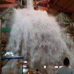 1,000 Gallon Water Bucket Dump