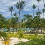 Photo of Hotel Riu Palace Punta Cana