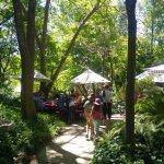 Beautiful garden restaurant