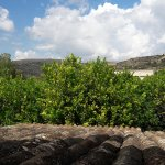 Foto de AgriResidence Valle Degli Dei