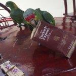 Photo de Art Hotel Managua