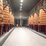 Photo de Bodegas Marques de Riscal