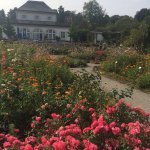 Prinz Garden Villa Foto