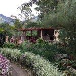 The Inn at Palo Alto Foto