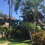 Photo de Coral View Villas