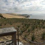 la dune vue du restaurant
