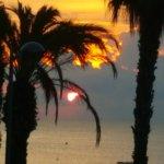 Foto de FERGUS Style Mar Mediterrania