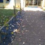 entrée de l'hotel , feuilles pas ramassées depuis des jours et des jours