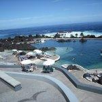 As piscinas naturais de maré