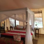 Bed in our tented room/suite