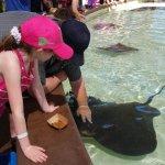 Foto di SeaWorld San Diego