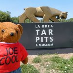 Photo de La Brea Tar Pits and Museum