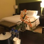 Hampton Inn & Suites Miami-South-Homestead Foto