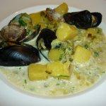 mussel chowder