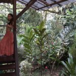 Photo de Monkey Tree Casitas