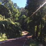 Environmental Interpretation Centre of Caldeira Velha Foto
