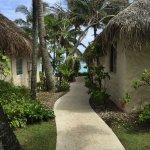 Paradise 🐟🏊🌴