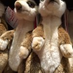 Photo de Hamleys Toy Store