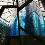 AquaDom & SEA LIFE Berlin Foto
