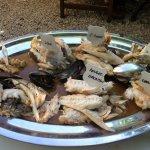 plat de poissons pour la bouillabaisse