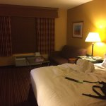 Holiday Inn Houston Intercontinental Airport Foto