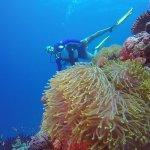 Bathala Island Resort Foto