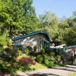 Village de Vacances Camboussel - Brassac - Tarn - Vue gîte